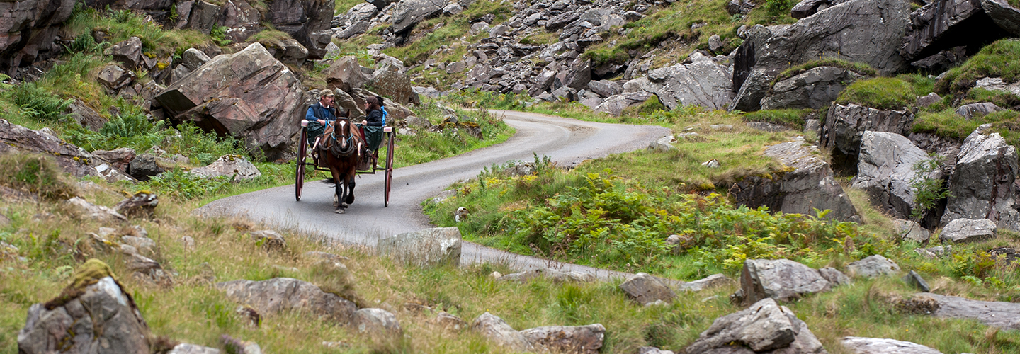 Ring of Kerry Horse Ride