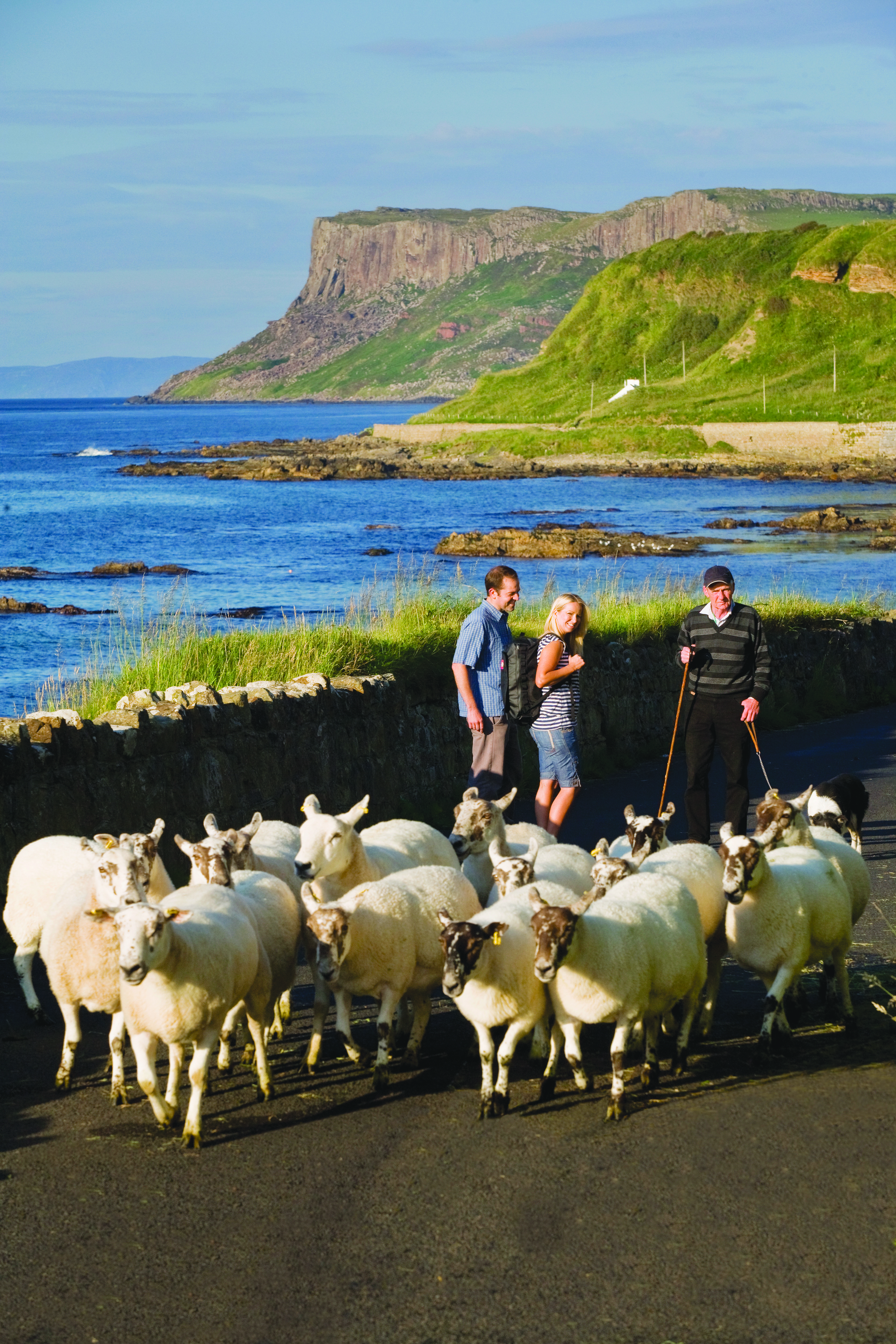 Couple in Ballycastle with Sheep