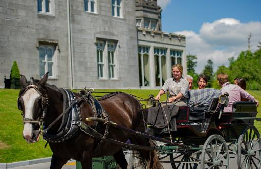 Jaunting Car Ride in Killarney, Ireland